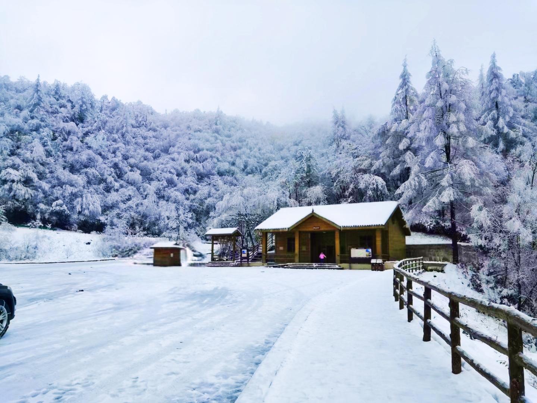 2020年的冬天的雪——巴中文旅云网带你去看光雾山的雪