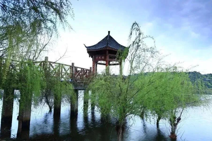 天府旅游名县 | 在初夏的风里,与醉美玉湖温柔相逢